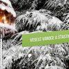 Zasněžená krajina přímo láká k horským silvestrovským oslavám, inspirujte své blízké a spolupracovníky pomocí novoročenky.