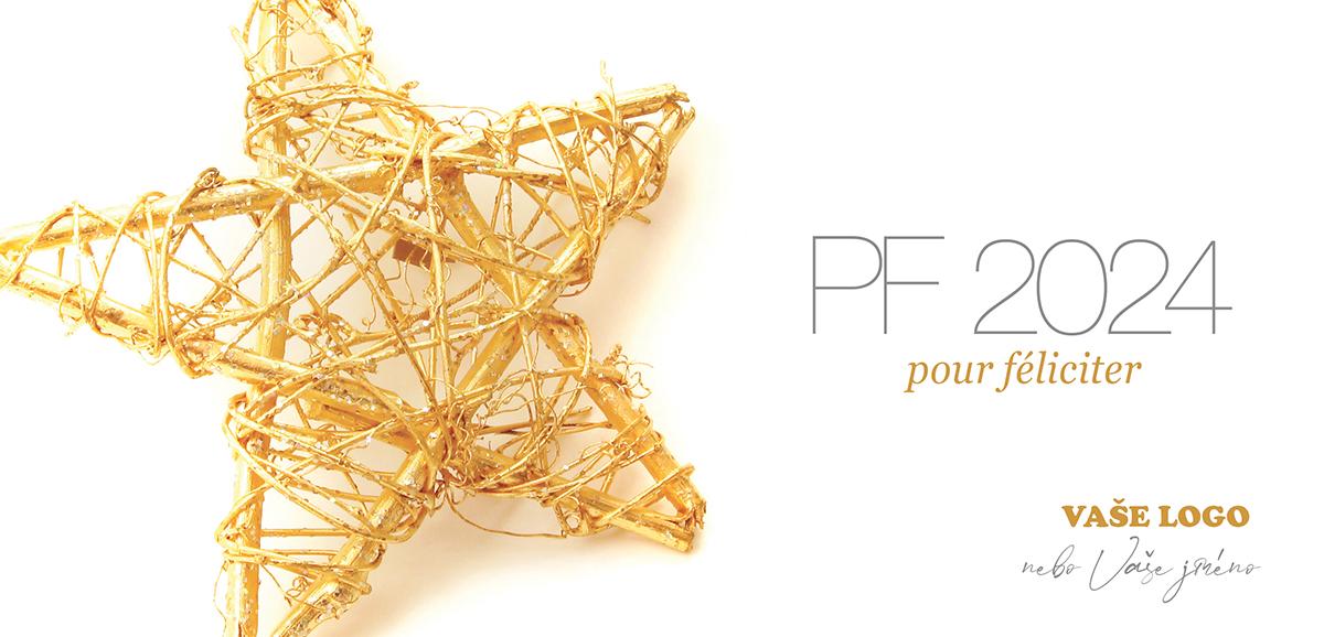 Vánoční hvězda vyrobená z přírodních materiálů z novoročenky připomíná, jak bezstarostné původně Vánoce byly.