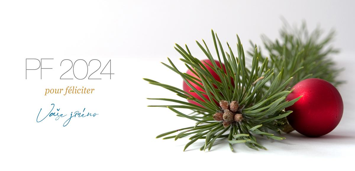 Větvička s malými červenými baňkami mile předává srdečnou atmosféru svátků, přidejte ji do novoročenky.