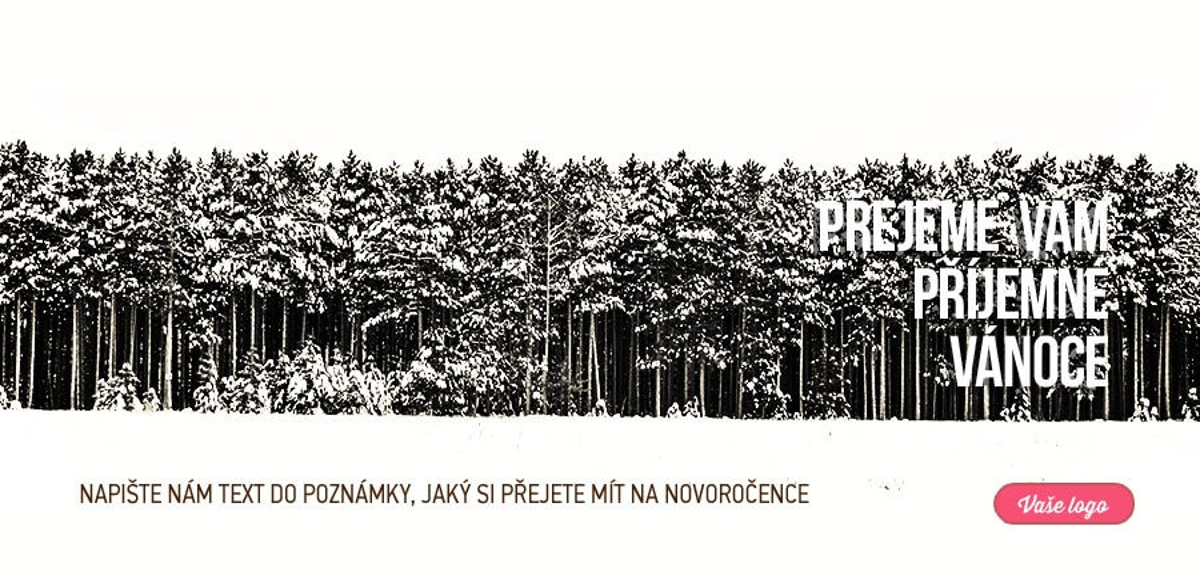 Černobílá fotka zasněženého lesa zachovává atmosféru novoročenky velmi netradičním způsobem.